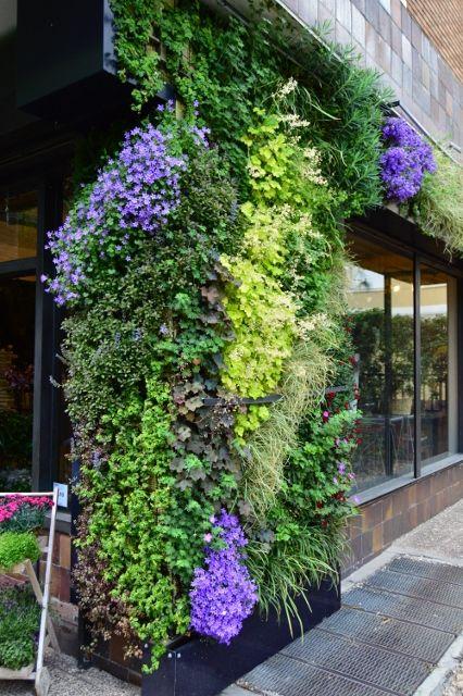Jardín vertical de exterior