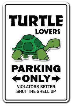 Turtle crafts on Pinterest | Felt Turtle, Turtles and Crochet Turtle