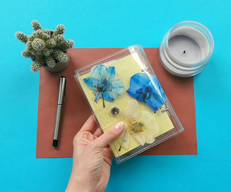 Orchid notebook, terrarium A6 notebook binder, white blue orchids journal, unique  sketchbook with pressed flower, gift for orchid fans by YPSILONBAGS on Etsy