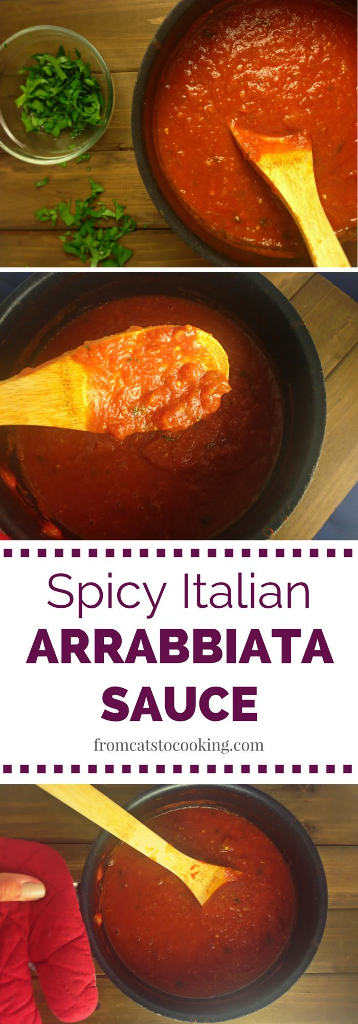 This Homemade Spicy Italian Arrabbiata Sauce recipe is super easy to make and extremely delicious. It's also gluten-free and free of any fillers and junk ingredients. | fromcatstocooking.com