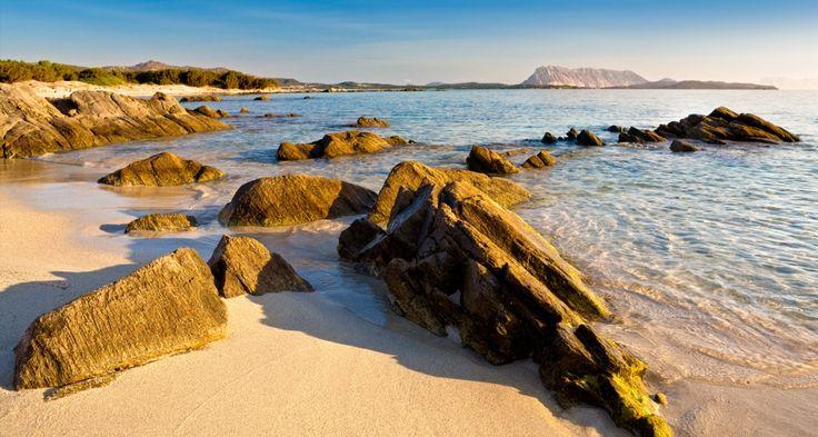 Punta Est si trova nella località di Capo Coda Cavallo, nel comune di San Teodoro. La spiaggia è circondata da una fitta vegetazione, evidenziata dal contrasto offerto dal candore della sabbia e dall'azzurro turchese delle limpidissime acque. La passeggiata sul monte di Capo Coda Cavallo apre la vista al bellissimo panorama sull'Isola Lu Ferru o Proratora, di Molara e di Tavolara, oltre che sulla spiaggia di La Cinta a San Teodoro e, in lontananza, sullo stagno.