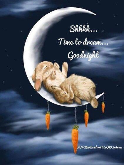 Good night Nancy..