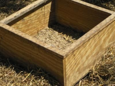 how to make a chicken dust box