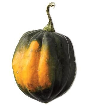 Your guide to every type of squash (and how to cook it).