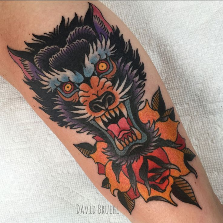 Bright wild fierce symmetrical wolf head and rose on upper inner arm. Traditional color tattoo. David Bruehl RedLetter1 Tampa,FL www.davidbruehl.com