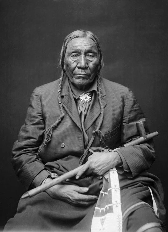American essay native north partial photograph recall