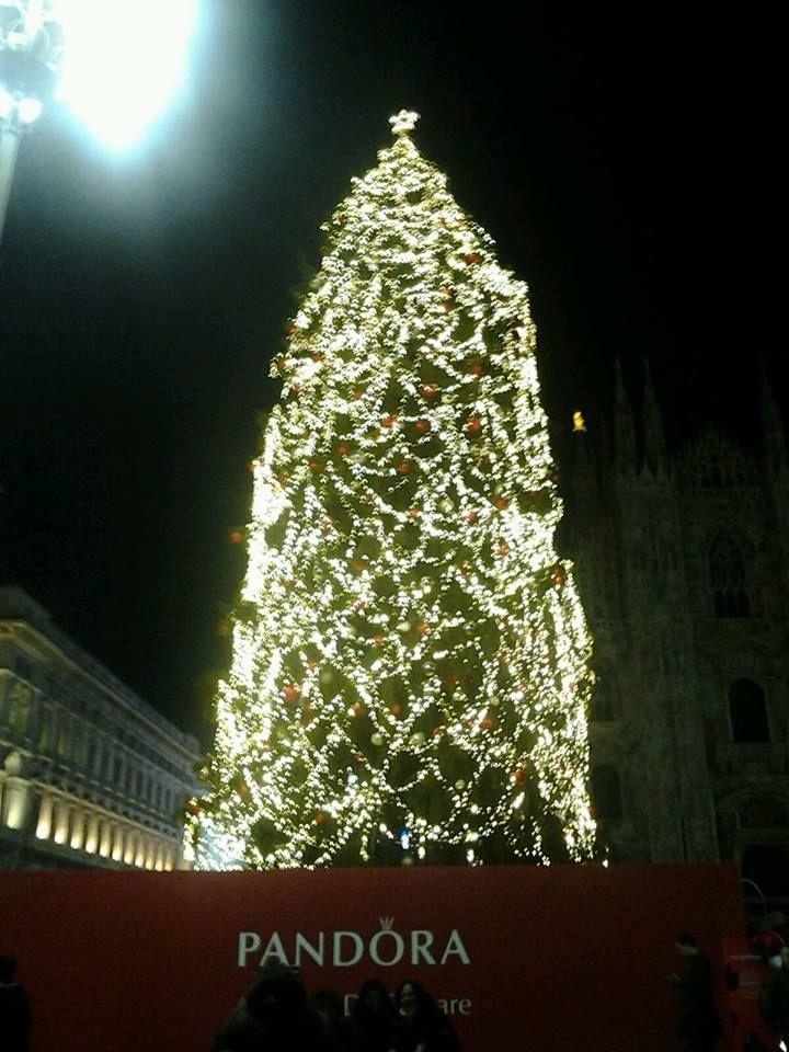 L'albero di Natale illuminato in piazza Duomo a Milano