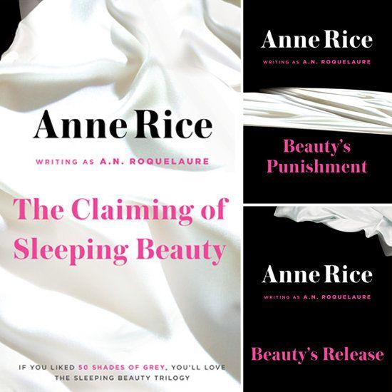 A Sleeping Beauty Novel Series