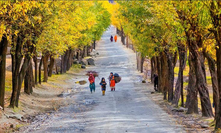Road to Skardu. . Skardu, Pakistan — S.M.Bukhari