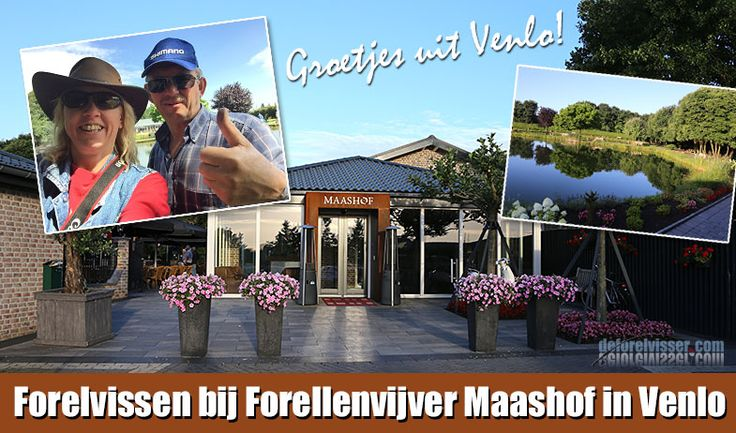 _Maashof_forelvissen