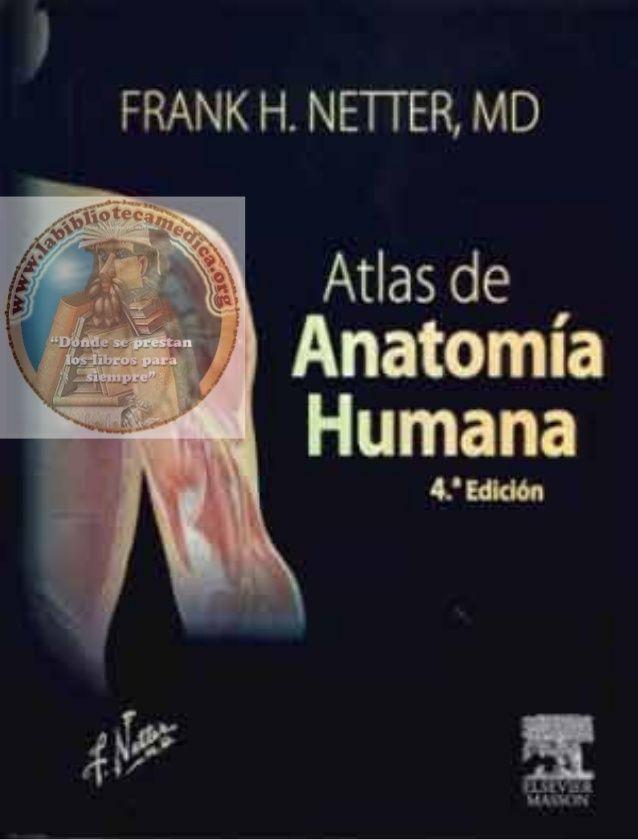 Netter   Atlas de anatomía humana, 4ª edición