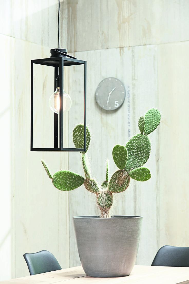 DYI - Un felinar transformat în lampă, într-un decor Industrial Modern.