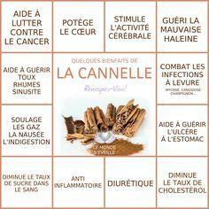 Les Bienfaits de la Cannelle   CANNELLE Le Monde s'Eveille Grâce à Nous Tous ♥