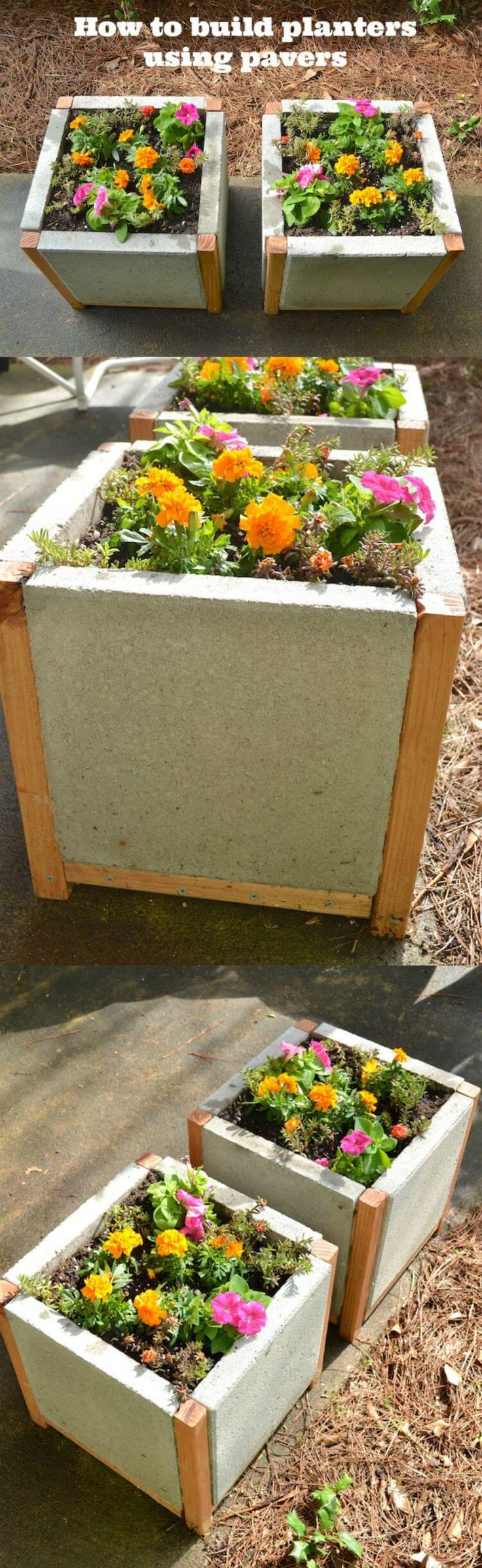 Make a paver planter! DIY plant boxes with a modern look are easy and inexpensive to make with square concrete pavers and adhesive. via @modpodgerocks