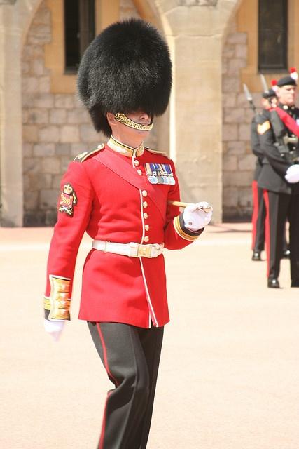 Warrant Officer, Grenadier Guards