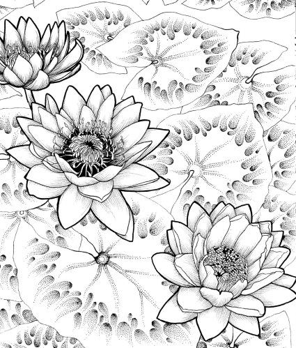 Adult Coloring Book Where The Wild Flowers Grow