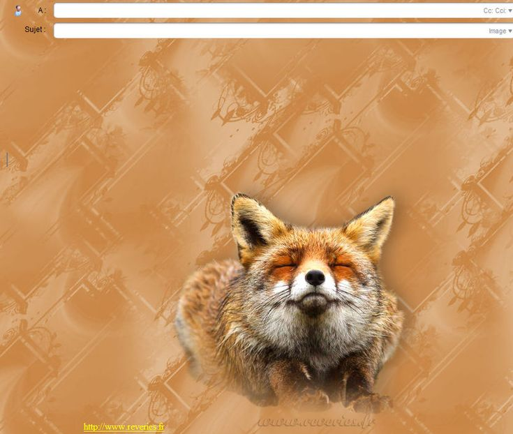 animaux special_incredimail papiers_a_lettres reveriesfr reveriespomeranianincredimail lettersfrspecialanimals