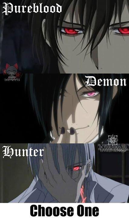 I Choose Demon Animes Vampire Knight And Black Butler