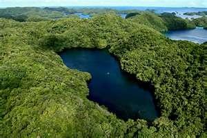 Jellyfish Lake, Pulau islands