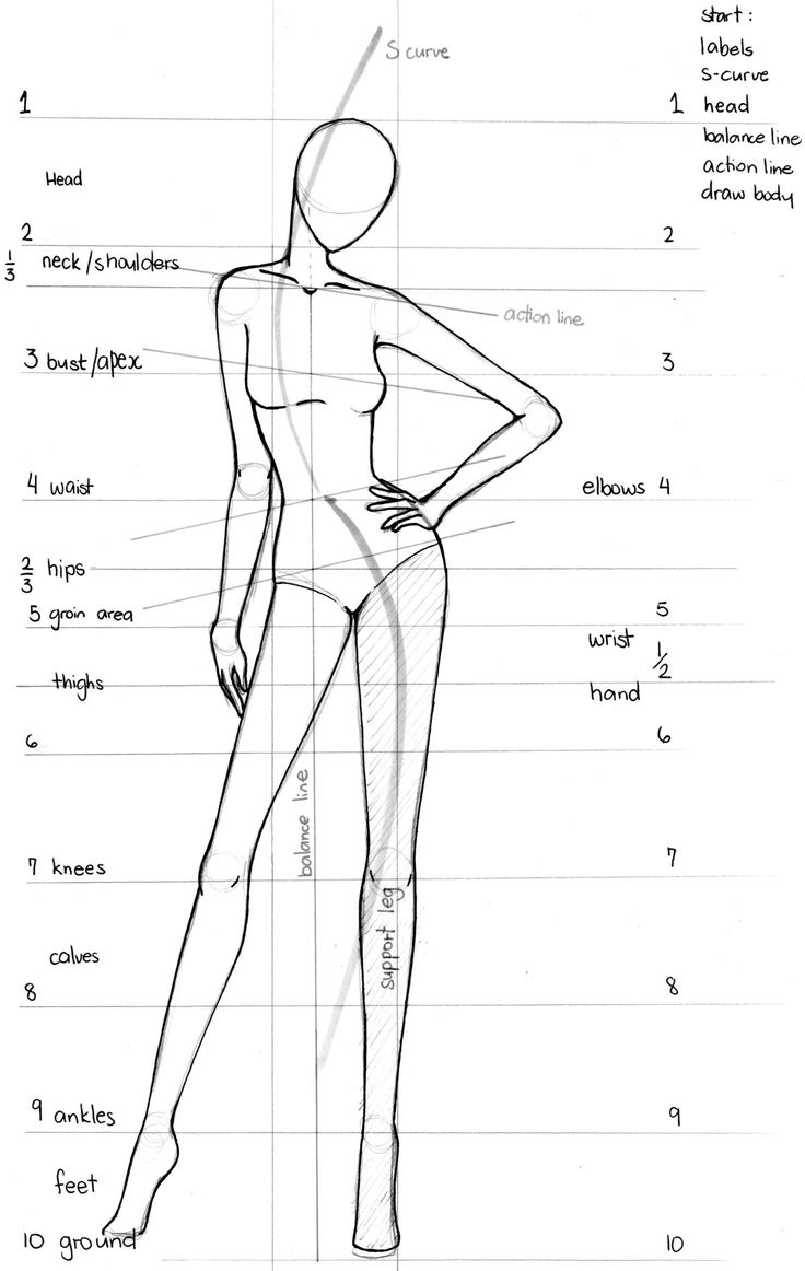 Fashion Illustration anatomy                                                                                                                                                     More