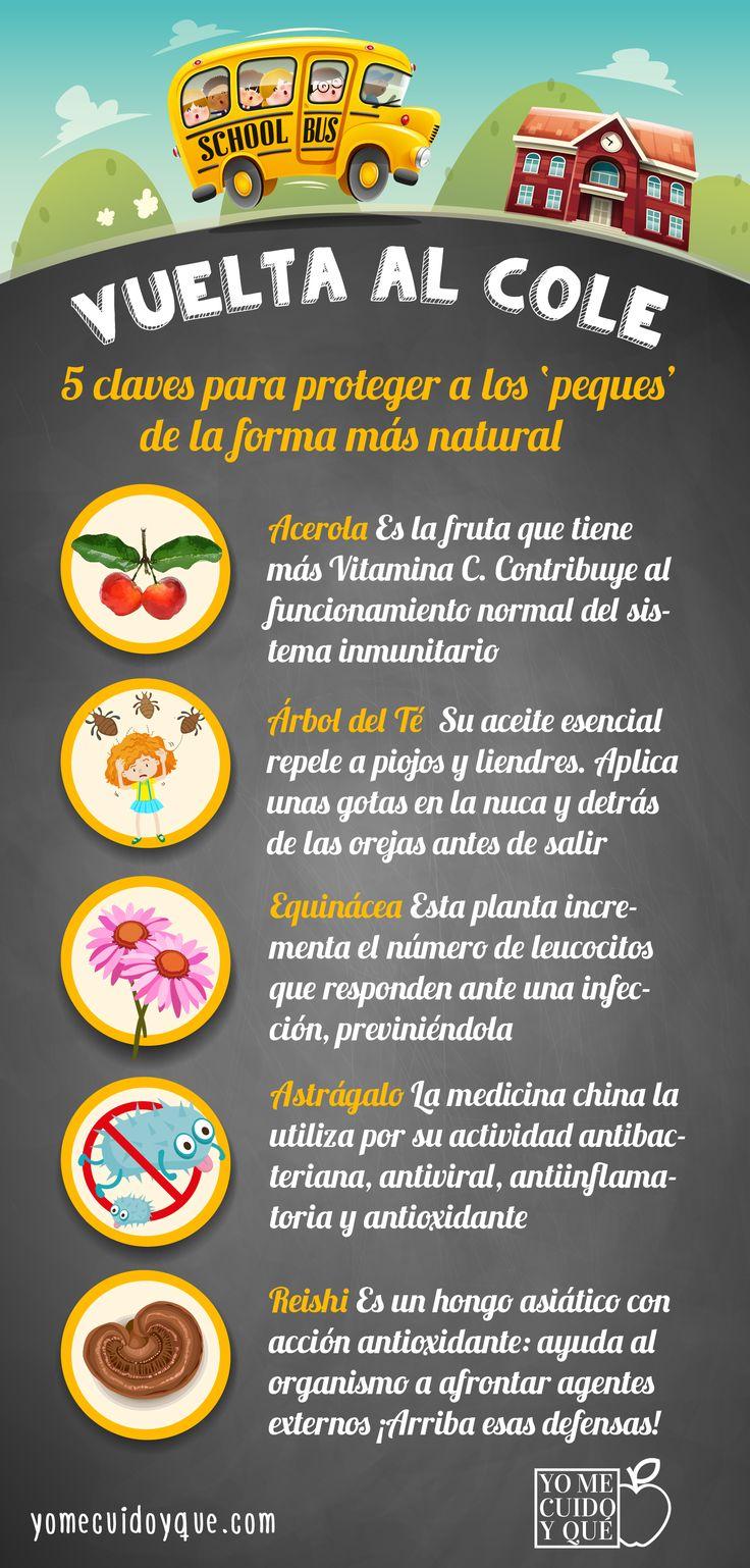 5 ingredientes naturales para proteger a los peques tras su vuelta al cole