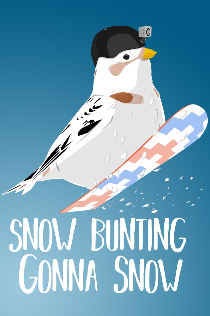 Snow bunting, show the Bird Nerd in you with this funny bird pun tee shirt