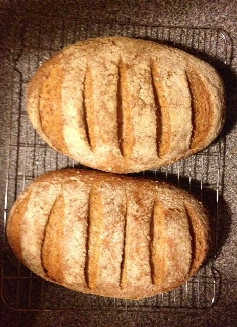 Fast No-Knead Wholemeal Bread Recipe