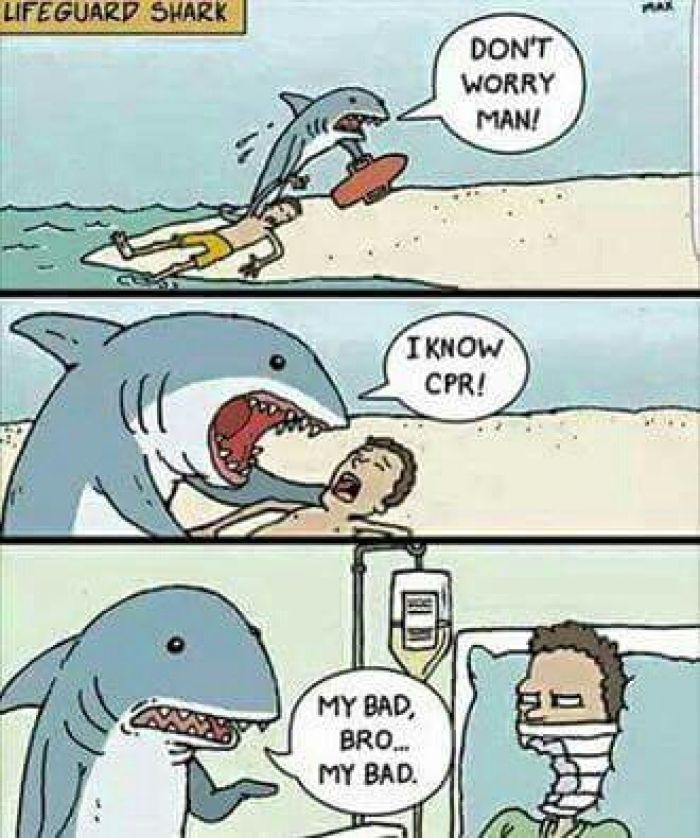 Lifeguard shark