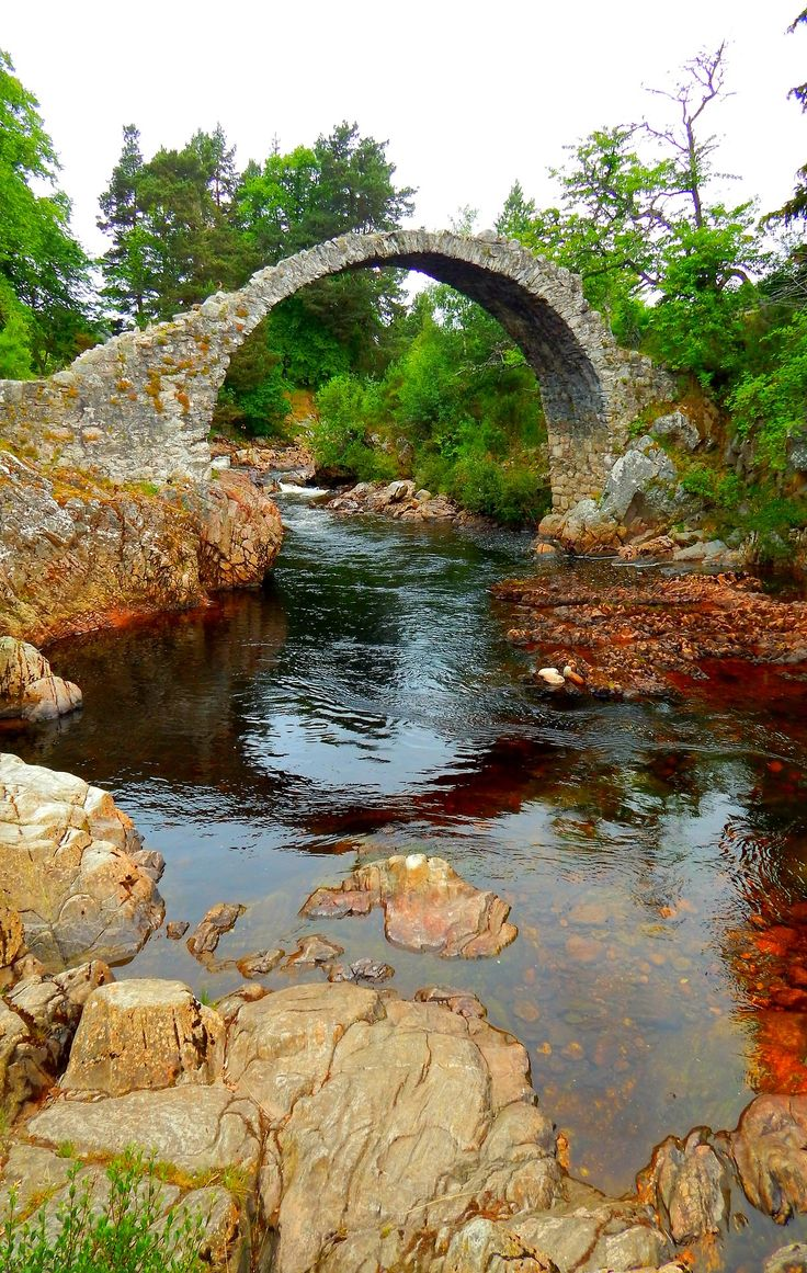 Carrbridge, Cairngorms, Highlands, Escocia, Reino Unido