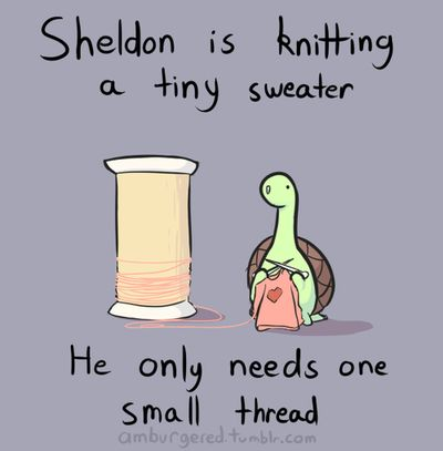 tiny sweater for a tiny dinosaur who thinks hes a turtle with a acorn shell