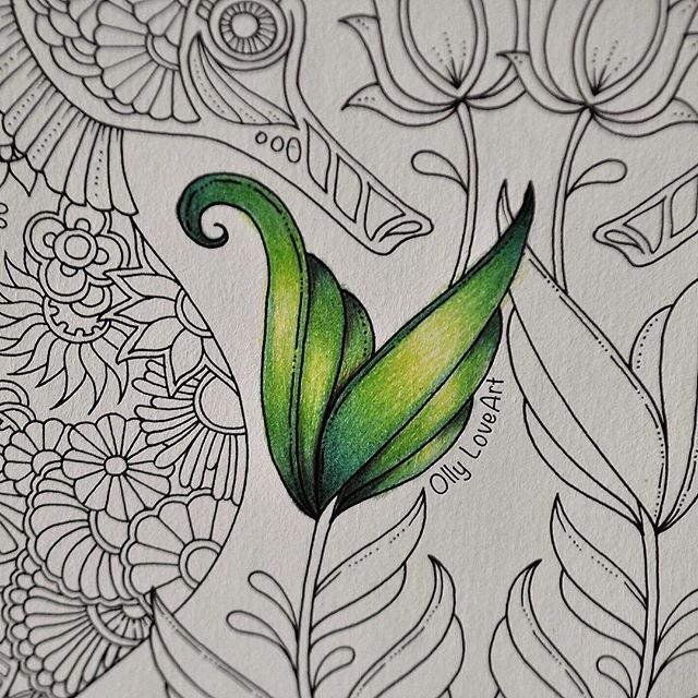 How I Color The Leaves From Page Seahorses Lost Ocean Coloring Book Watch Video Tutorial On My Channel Link In Bio Coloringbook