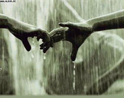 Siempre unidos, a pesar de las tormentas... lucharemos juntos contra todos los obstáculos... la lluvia cesará, llegará la paz... y será en ese momento, cuando nuestra vida comenzará...<3