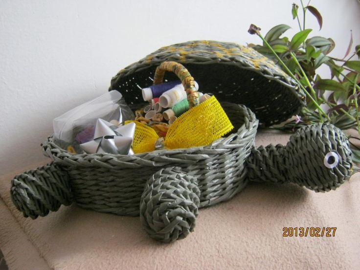 turtle, so cute