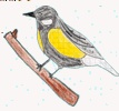 Tiere im Winter, Lernweb, von Kids für Kids mit Quiz, sehr ausführlich tw