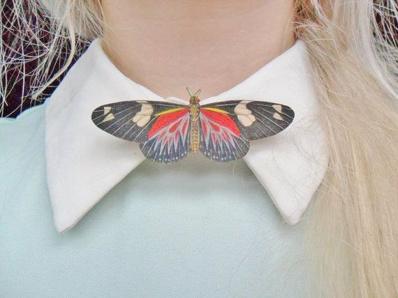 Cute Moth Insect Bug Butterfly Nature Entomology Collar Pin Badge Brooch, $6.27