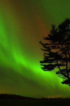 Alta-Can Aurora Tours, Northern Lights tours, Edmonton, Alberta, CAnada