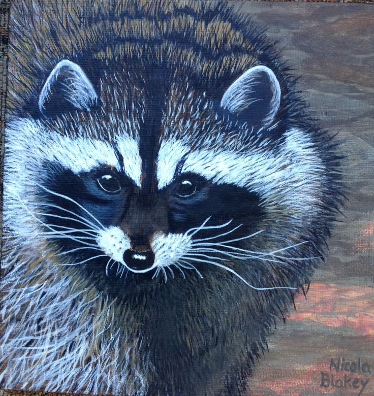 """""""Raccoon Trouble"""" small 8"""" x 8"""" painting sold."""