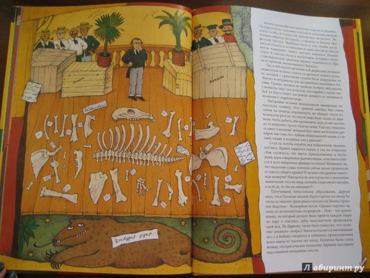 Иллюстрация 13 из 30 для Чарльз Дарвин - Ли-Юнь Инь   Лабиринт - книги. Источник: Никoль
