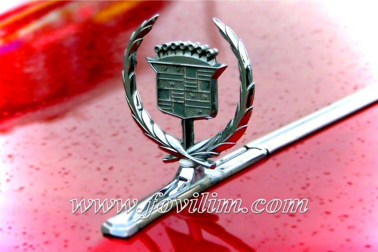 Fovilim | Wynajem zabytkowych aut Cadillac | Warszawa