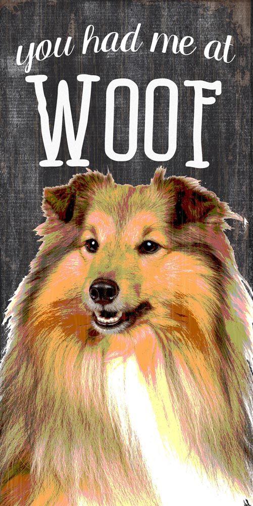 37 besten Collie Dog Lover Bilder auf Pinterest | Collie hund ...