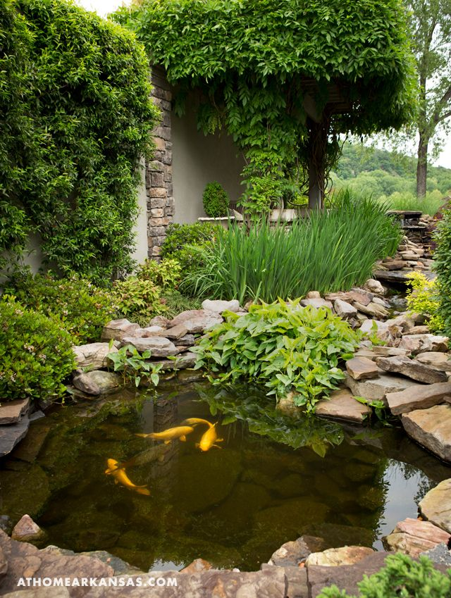At Home in Arkansas Peaceful Pond 158 best