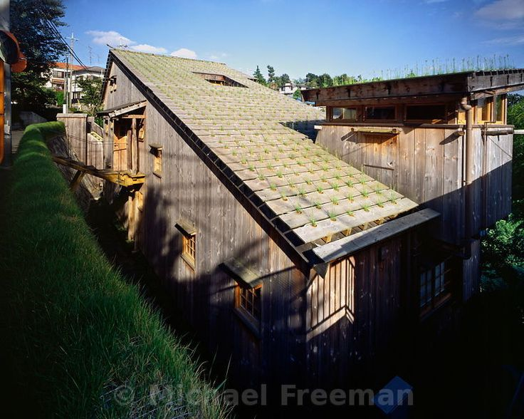 Michael Freeman Photography | Nira House - Roof top of a modern Japanese house distinguished by its 1,000 potted nira plants, or Chinese chives- Design by architectural historian Terunbu Fujimori