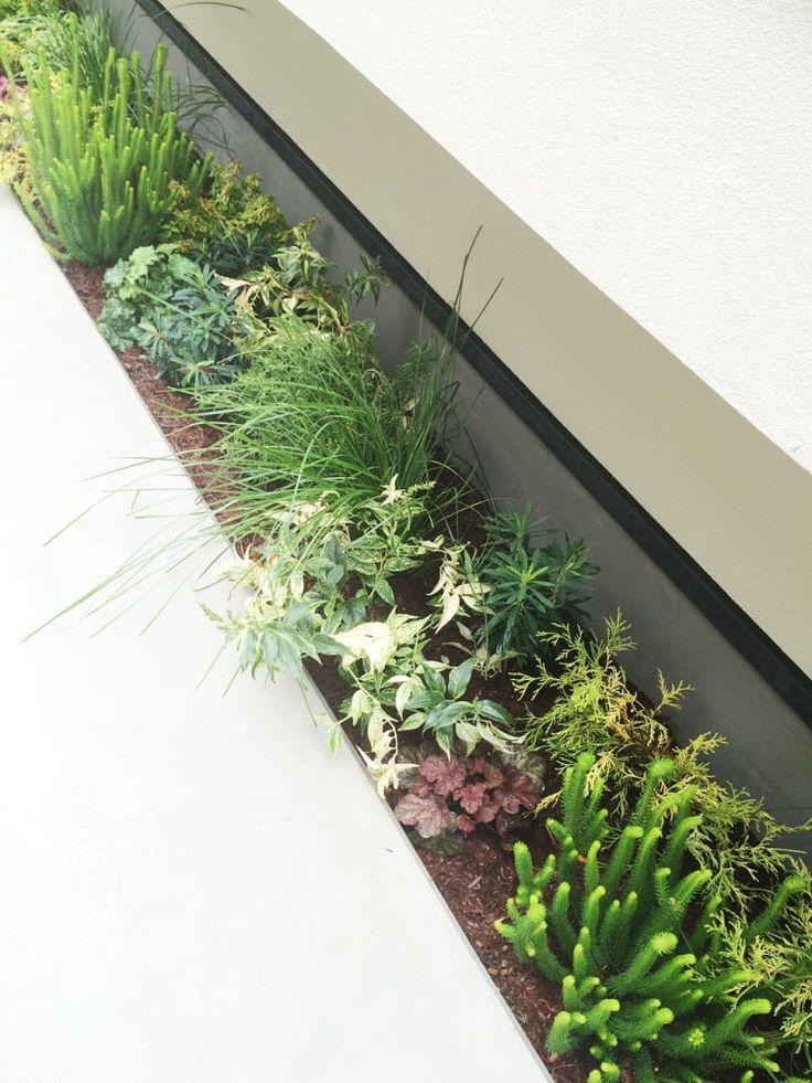 の庭のデザイン:をご紹介。こちらでお気に入りの庭デザインを見つけて、自分だけの素敵な家を完成させましょう。