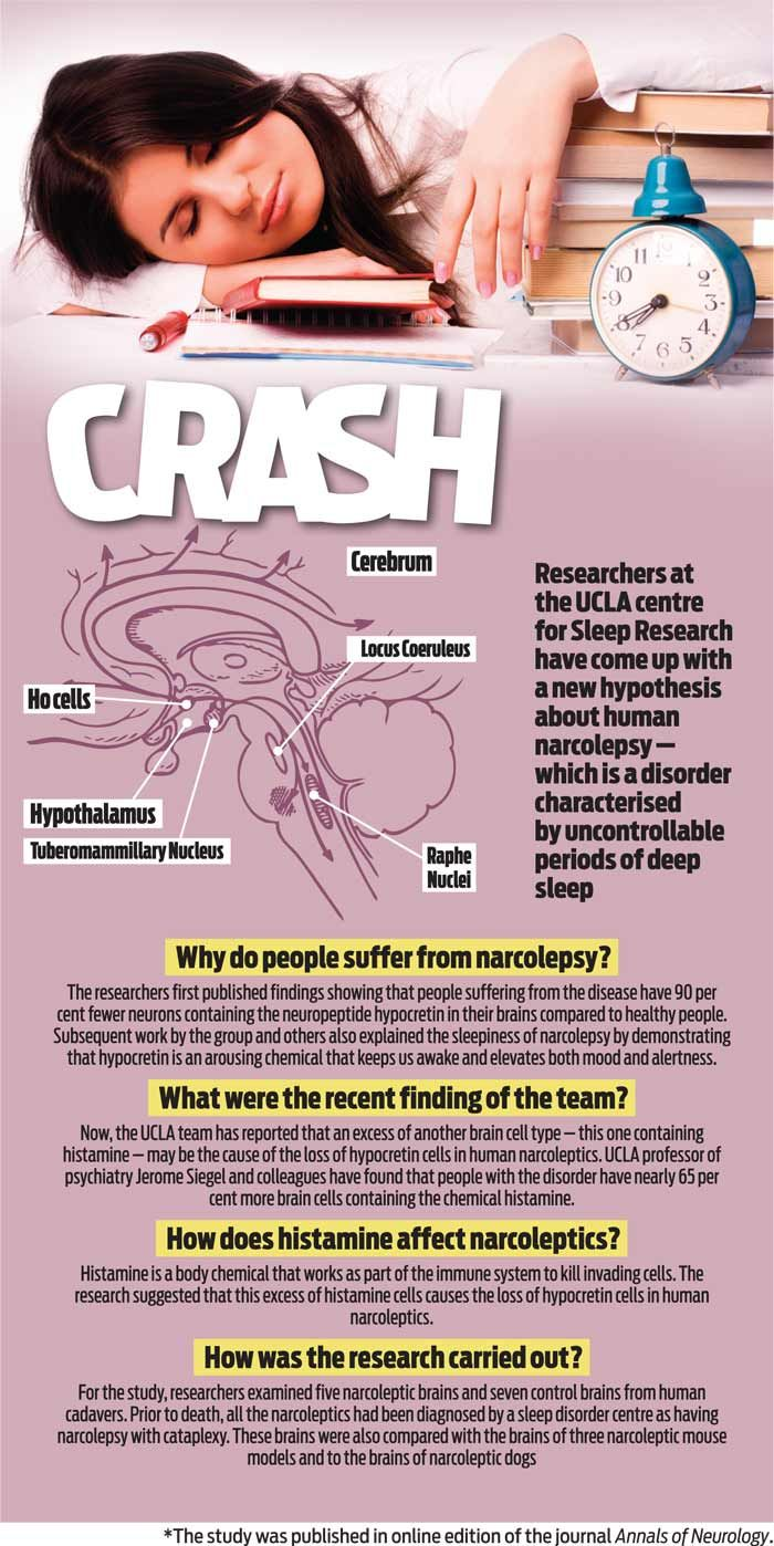 What is human narcolepsy? | Latest News & Updates at Daily News & Analysis