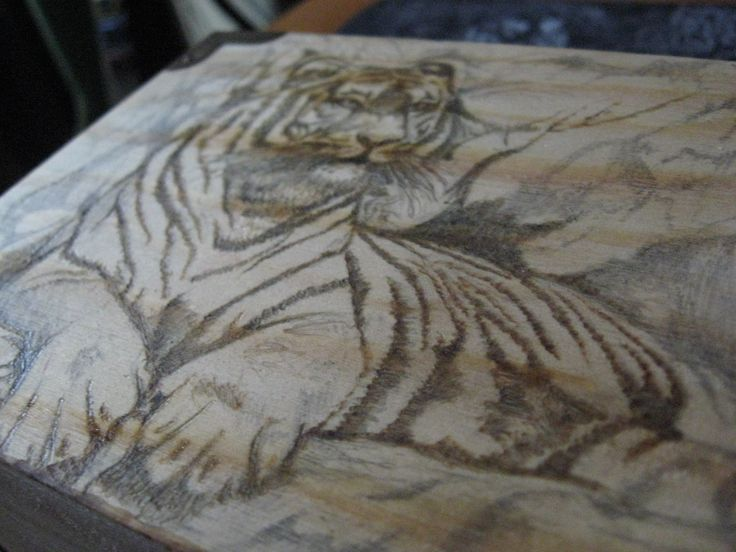 Stage 3, Started the wood burning on the tiger.