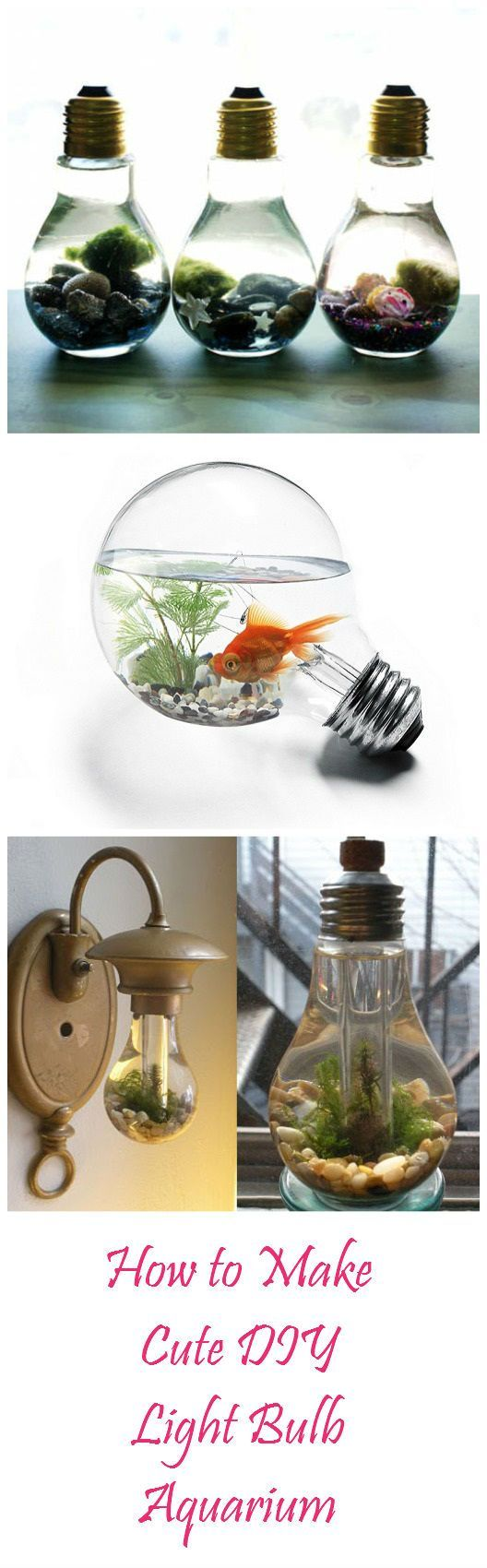 How to Make Cute DIY Light Bulb Aquarium