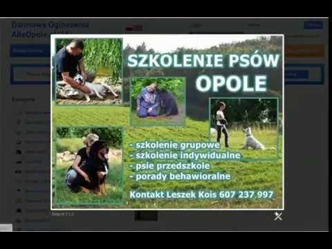 Darmowe ogłoszenia Opole Kategoria Zwierzęta - www.AlleOpole.pl/24/ http://www.alleopole.pl/24/