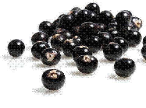 ACAI, ¿adelgazante, nutriente o antioxidante? O la baya milagro   El blog de Meritxell