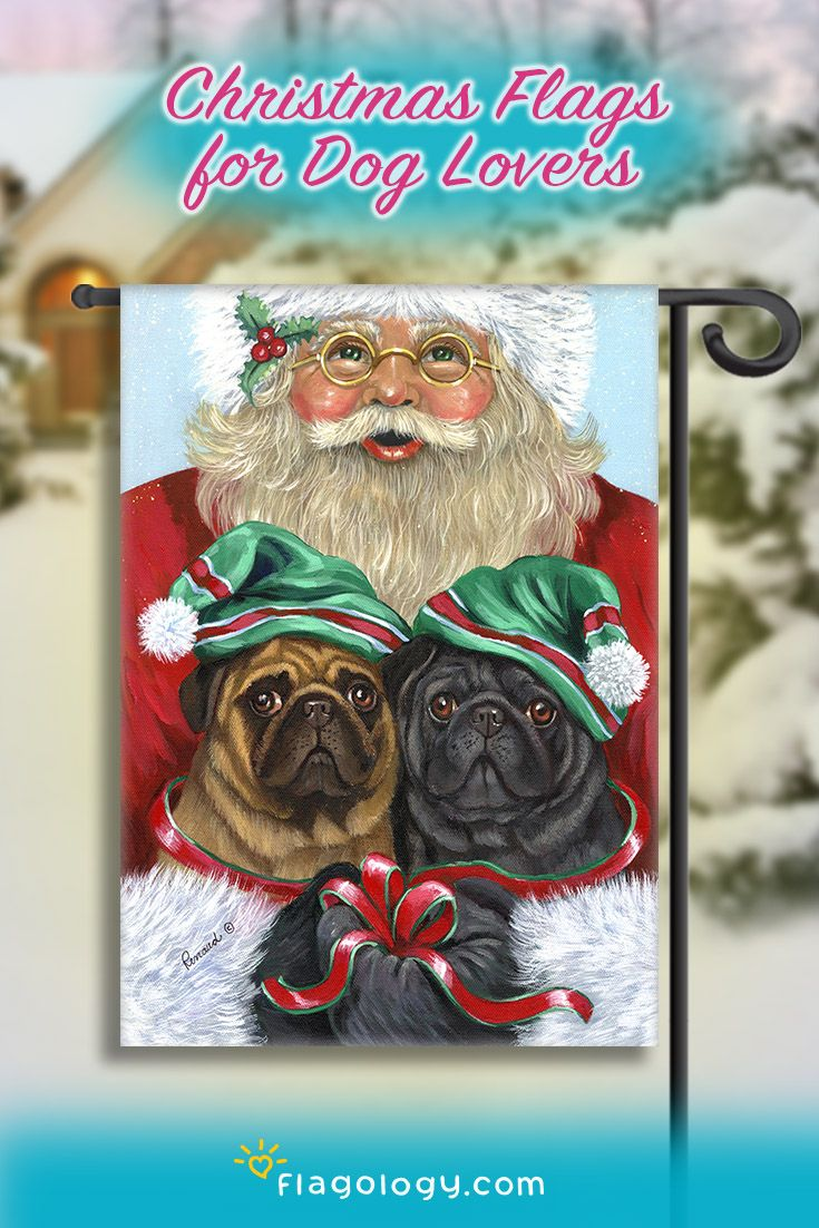 210 best merry pugmas images on pinterest holiday cards