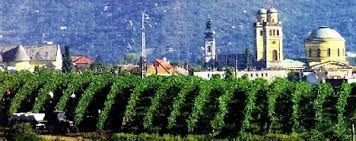 Vineyards around Eger